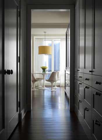 McGuire Architectural Interiors - Lake Shore Drive Apartment Views